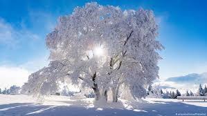 machen Sie Ihren Trailer winterfest